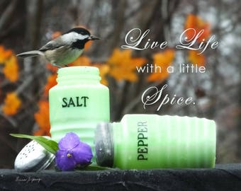AzarEl's Chickadee with Jadeite Salt and Pepper Shakers /  Greeting Card, Photo, Canvas Print/ Kitchen Wall Decor, Bird Photography