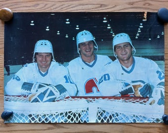 Vintage hockey poster - the Stastny brothers -  QUEBEC Nordiques - 16 x 23.5 - Vintage NHL - 80s