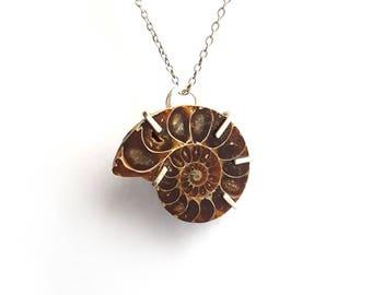 Ammonite Fossil Necklace - Hippy Boho Witch
