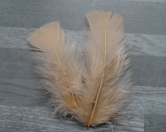 Set of 20 salmon-colored Turkey feathers