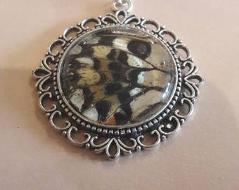 Real butterfly wing pendant necklace