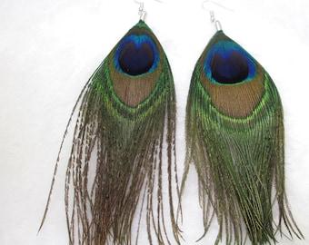 dangle earrings peacock feathers