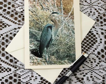 Lake Mead Heron Blank Card, Lake Mead Heron Note Card, Heron Birthday Card, Personalized Card, Heron Stationary