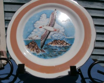 Seagull decorator plate, 8 inch wall plate, 3 Seagulls flying over the ocean,  picture of Seagulls flying