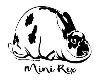 Mini Rex Rabbit - Shirt