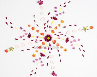 Flower Mandala Art Print 3