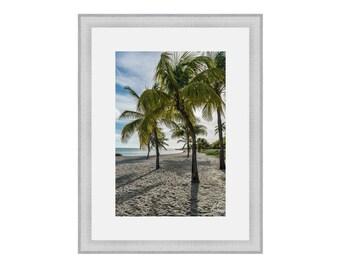 Key West Palm Tree Print, Key West Florida Wall Decor, Florida Keys Fine Art Print, Smathers Beach Key West Photo, Pam Tree Photo