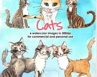 Watercolor cats bundle watercolor watercolor bundle watercolor set watercolor animals watercolor cats