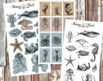 Sealife Creatures Full Set Planner Stickers boho