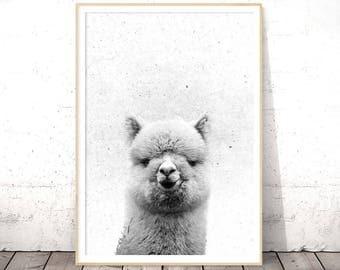 Alpaca Print, Alpaca Art, Kids Room Art, Animal Print, Kids Printables, Black and White Nursery Decor, Black and White Animal Prints, Trends