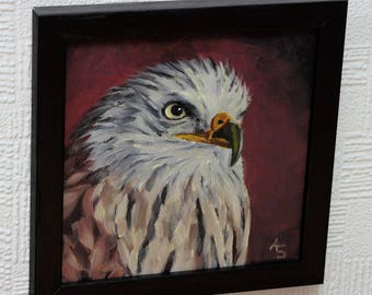 Red Kite, Original Oil painting, gifts for men gifts for woman, birdwatcher, wildlife picture,  Bird Art, Bird Gift, bird of prey painting