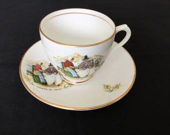 DUCHESS teacup and saucer, souvenir of Wales.