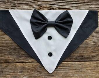 Tuxedo dog bandana with bowtie over the collar