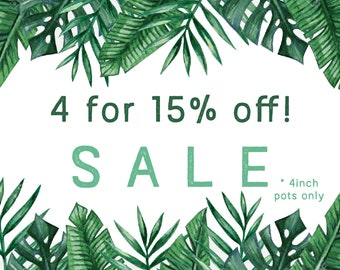 "x4 for 15% Off! //  4"" Indoor and Outdoor Pots or Planters"