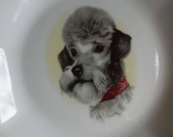 Plate decorated dog - plate dog original vintage - Christmas gift