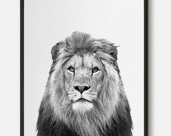 Lion Print, Safari Decor, Nursery Animal Wall Art, Lion Poster, Kids Room Printable, Instant Digital Download, Black and White Photo
