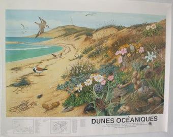 """Poster """"Ocean Dunes"""""""
