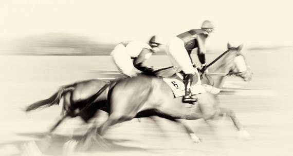 """Horse Racing Prints, """"Day At The Races"""", Horse Prints, Equine Prints, Black and White Prints, Horse Jumping Art, Animal Prints"""