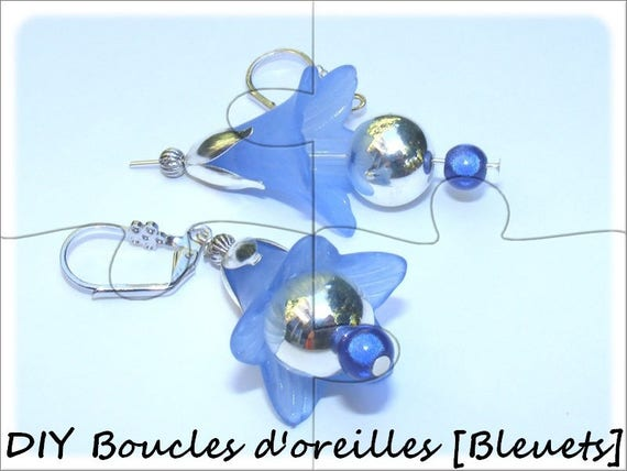 """DIY"" Kit earrings to make yourself [blueberries."