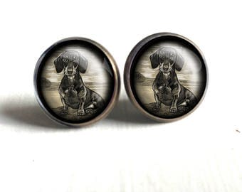 Dachshund Stud Earrings- Traditional dachshund illustration under glass cabochon, nickel free brass findings