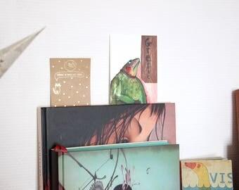 Postcard illustration frog card