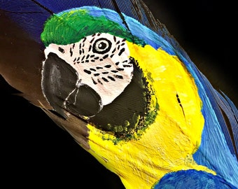 Hand Painted Blue and Gold Macaw on Feather