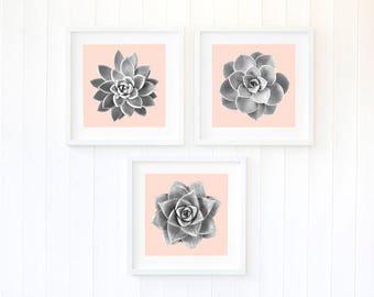 BLUSH pink wall art, Large loft art summer decor ideas, succulent leaves above the bed decor, new apartment decor, Succulents wall print,