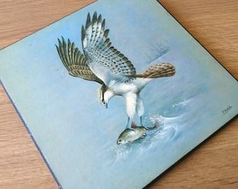 Vintage Bird Print Wooden Osprey Wall Plaque Bird Picture Osprey Wall Art Bird of Pray
