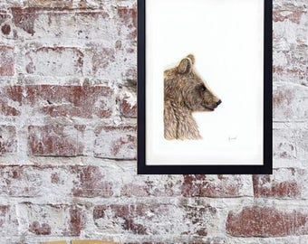 Teddy Bear Art,  Wildlife Artwork Print, Nursery Art, Illustration, Animal Art Print, Safari Bear,NURSERY ART