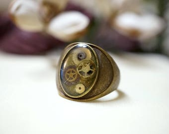 Ring, gears and watch mechanisms
