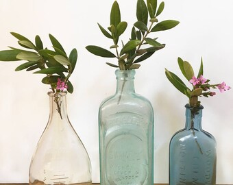 Collection of three embossed, antique glass bottles, apothecary, medicine bottles, colored glass, flower vases, farmhouse decor