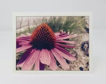 10 Flower Cards//Blank Flower Cards//Pink Flower Cards//Blank Cards//Cards for Flower Lovers