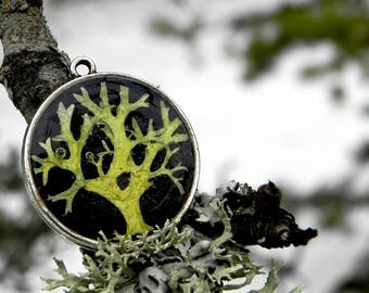 Mens Moss Necklace, Woodland Gift, Black Resin Pendant, Lichen, Wearable Plant, Personalized Nature Jewelry, Botanical Terrarium Necklace