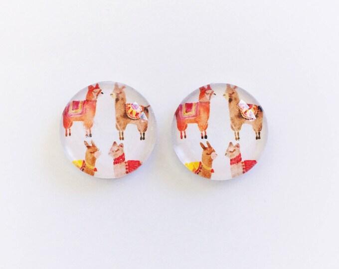 The 'Alpaca' Glass Earring Studs