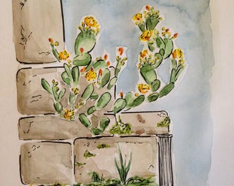 Spring cactus (watercolor and ink painting)