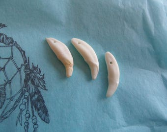North American natural Wolf tooth pendant