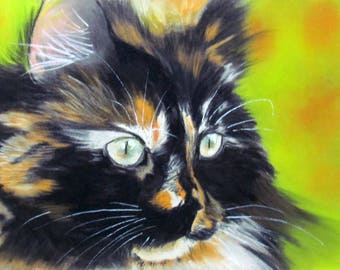 Tricolor cat - black white and light