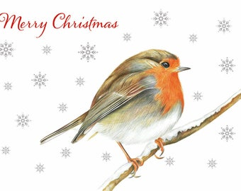 Sale + FREE postage, 6 Cute A6 Robin Christmas Card, FREE POSTAGE, Robin Red Breast Christmas Card, Robin Illustration, Robin in Snow
