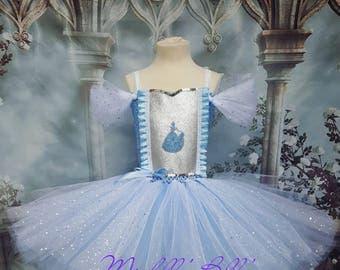 Disney Cinderella style tutu dress
