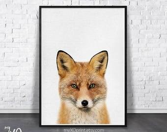 Forest Animal, Woodlands Nursery, Fox Print, Nursery Animal Print, Printable Art, Digital Download Art, Woodlands Fox Wall Art, Fox Photo