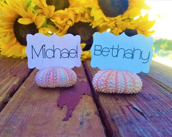 Sea urchin place cards - Beach wedding decor - Natural sea urchin - Place cards - Beach theme wedding - Destination wedding - Wedding favor