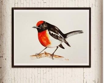 Original, watercolor painting, bird art, wildlife, robin, handmade artwork, not print, wall décor, home décor, red, colourful, nature art