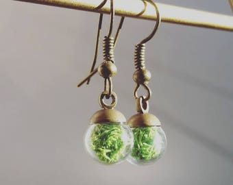 Extra Tiny Terrarium Drop Earrings