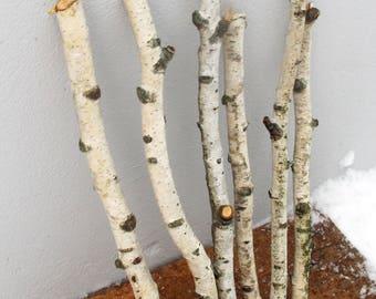 """Set of 6 Birch Branches Sticks 14,5"""", Natural Decor, Birch Twigs, Forest Supplies"""
