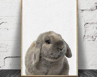 Imprimé lapin, bébé Animal imprime, décor de chambre d'enfant bois, lapin murale impression d'Art, numérique en téléchargement,