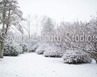 Digital Backdrop, Winter Wonderland, Digital Download, Winter Backdrop, Digital Prop, Snow Scene, Christmas Backdrop, Composite Photography