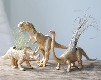 gold and black dinosaur air plant holders
