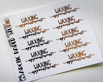 Waxing Appointment - FOILED Sampler Event Icons Planner Stickers
