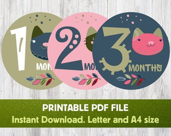 Baby Monthly Stickers Printable, Baby Shower, Baby Month Stickers, Milestone Stickers, Printable Baby Milestone, Download baby stickers, Cat