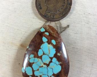 27.8ct Stabilized #8 Turquoise  (Item#907)